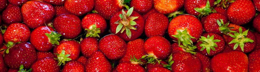 Strawberries-HeaderImage